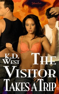 Visitor-6-cover-kaleigh-800