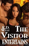 Visitor-5-cover-800